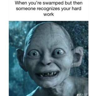 SLPrunner : Funny SLP Memes!